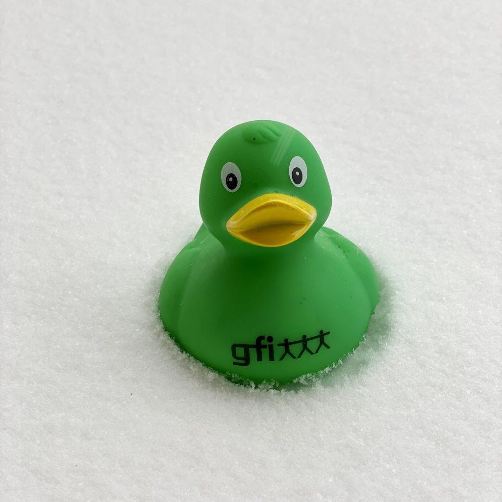 gfi-Ente im Schnee